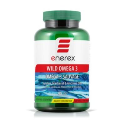 Omega Wild 3 90kps, Enerex